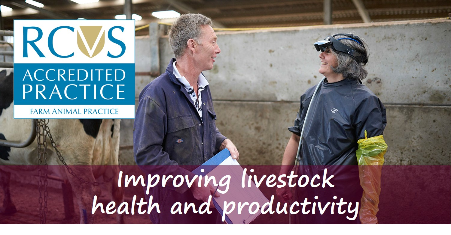 Improving livestock health & productivity