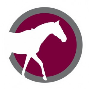 Equine Logo, taken from our main logo