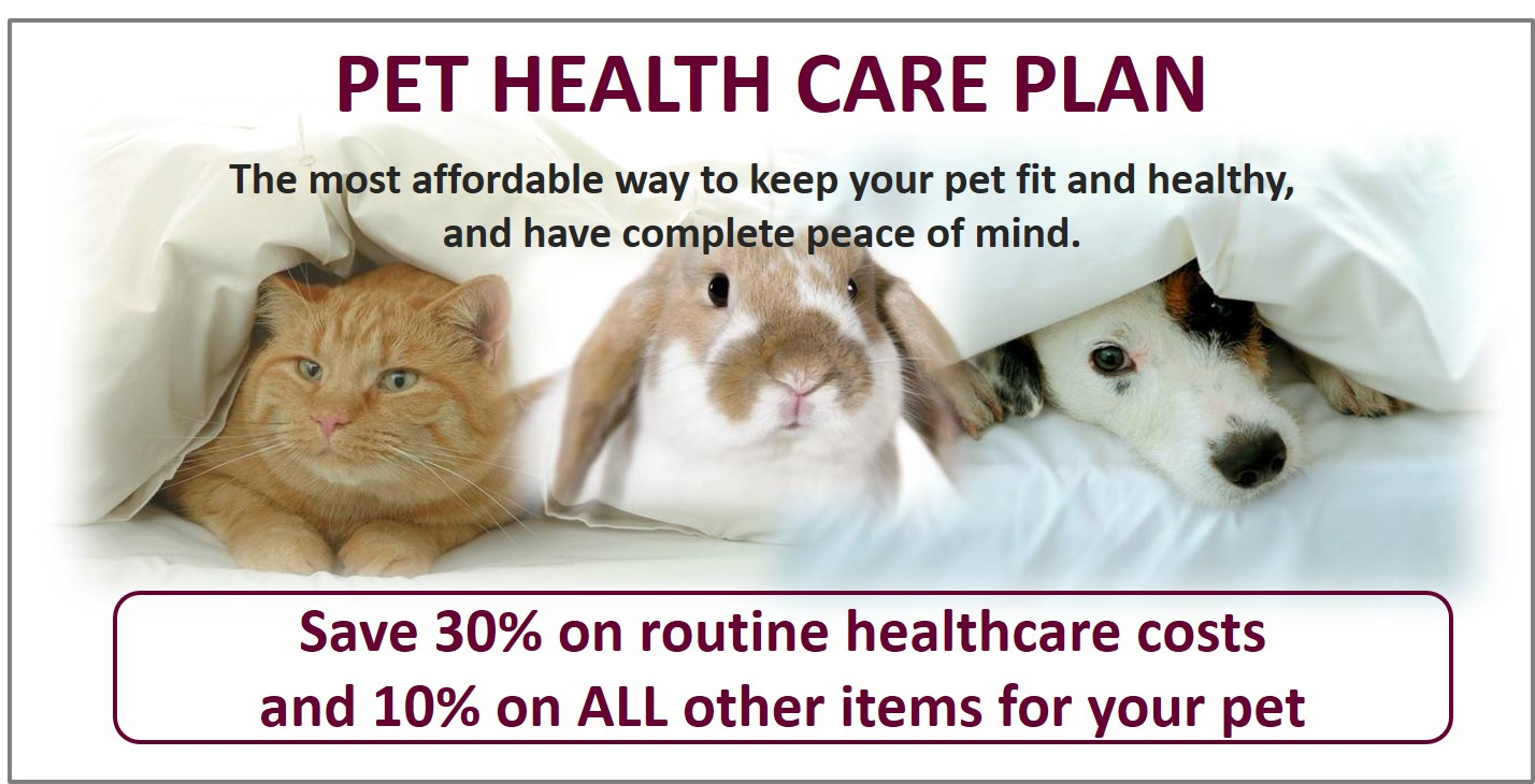 Pet Health Care Plan Hampden Vets